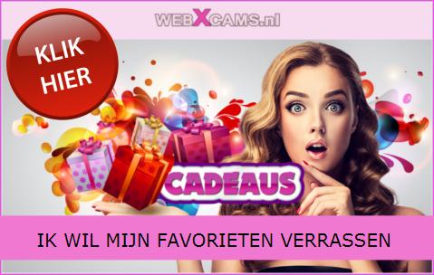 webXcams.nl